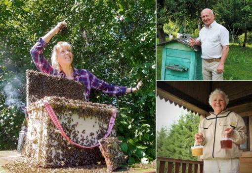 Bitininkų rūpesčiai: bitės apsiskraidė, bet rizika išlieka