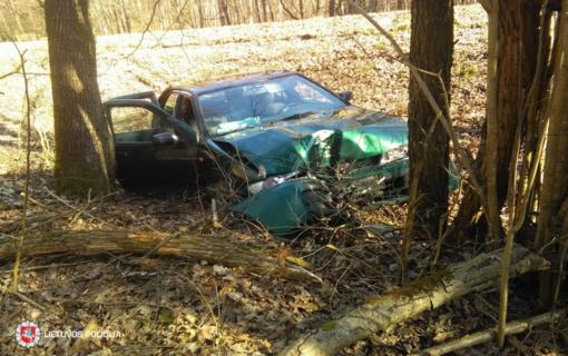 Lazdijų rajone į medį rėžėsi automobilis