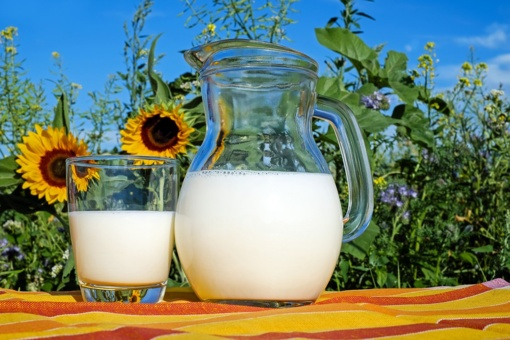 Pienininkai: pieno žaliavos importo sustabdymas sužlugdytų visą pieno sektorių
