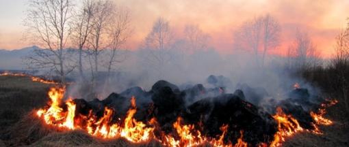 2020 metų pirmojo ketvirčio gaisrų statistika Vilniaus rajone