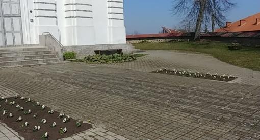 Alytaus rajono seniūnijos jau puošiasi gėlėmis