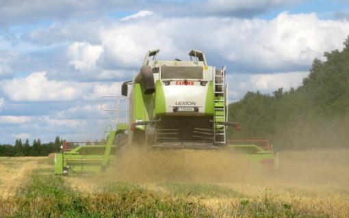 Dirvožemyje azoto nedaug: tai ne problema linkstantiems kuo natūraliau ūkininkauti