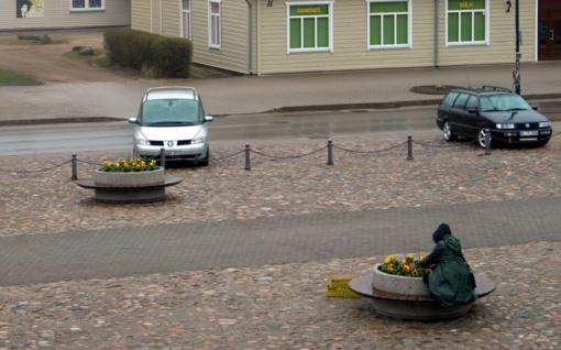 Mieste prasidėjo gėlių sodinimas