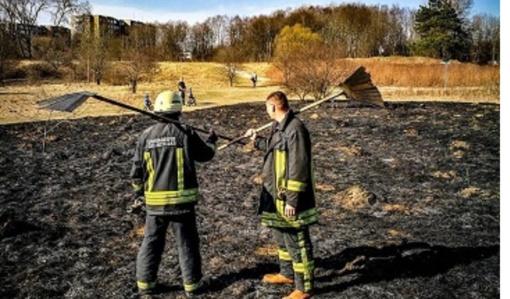 Ugniagesiai ir miškininkai savaitgalį gesino tris didelius miškų ir pievų gaisrus