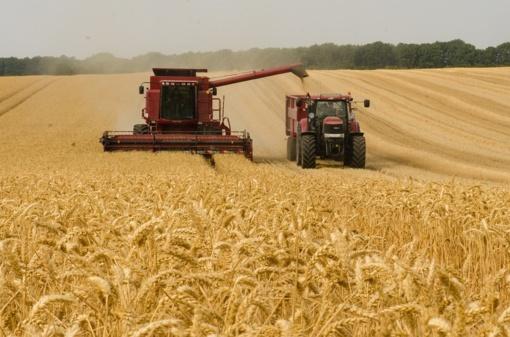 NMA vadovas: agentūra sieks būti ne kontrolės, o pagalbos ūkininkams institucija