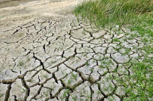 Klimatologas: kritulių pasiskirstymas šalyje labai netolygus, apie stichinę sausrą kalbėti dar anksti