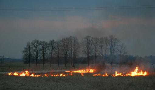 Kelmės rajone degė durpynas