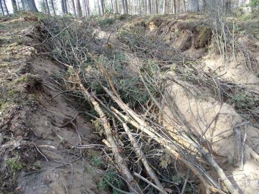 Miškovežiai suniokojo Girežerio piliakalnį