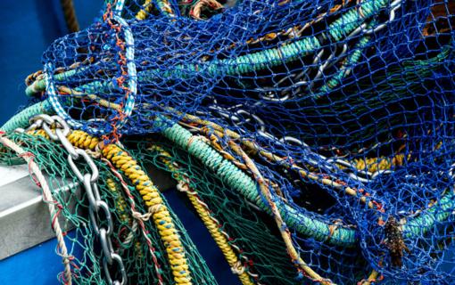 Švenčionių rajone sulaikytas statomuoju tinklu žuvis gaudęs vyras