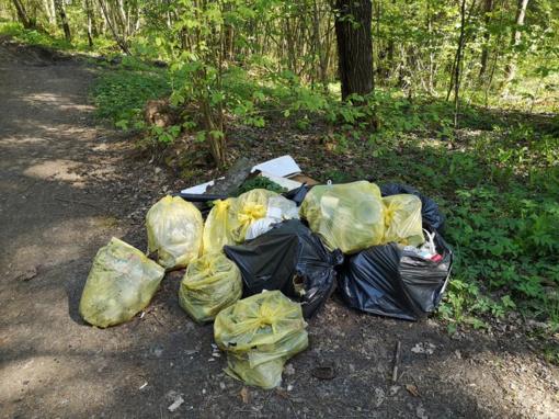 Mišką laiko savartynu: šiukšlėmis atsikratė vaizdingoje Kauno rajono vietoje