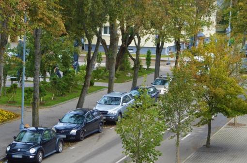 Dalyje Palangos miesto gatvių – mokamas automobilių stovėjimas