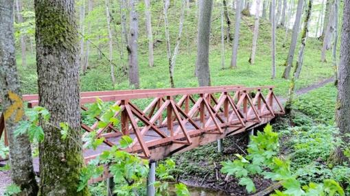Vidzgirio botaniniame draustinyje atnaujintas tiltelis