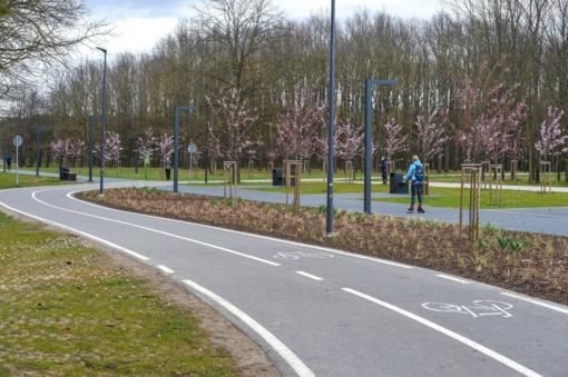 Planuojama panevėžiečiams suteikti galimybę naudotis elektrinių paspirtukų bei dviračių dalijimosi paslaugomis