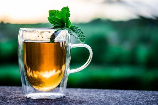 Matcha arbatos paplitimas