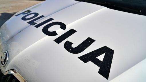 Kėdainių rajone pareigūno automobiliui kelią užkirto išbėgusi stirna
