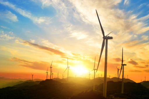 Pakruojo rajono savivaldybės teritorijose planuojama vėjo elektrinių statyba