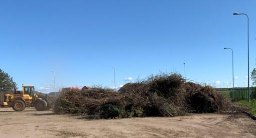 Karantino metu dvigubai išaugo atliekų kiekis
