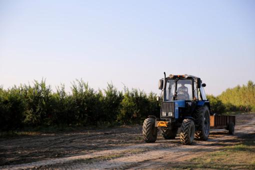 """Ūkininkas """"Mercedes"""" apipylė srutomis (vaizdo įrašas)"""
