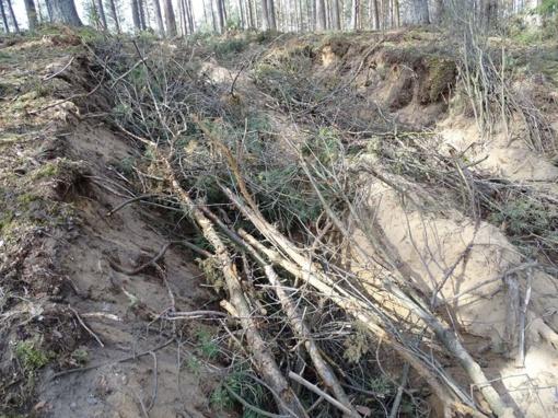 Sužalotas piliakalnis bus sutvarkytas