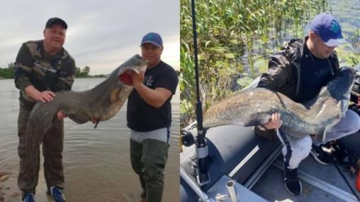 Savaitgalio laimikis: važiavo žvejoti lydekų, sugavo įspūdingą šamą