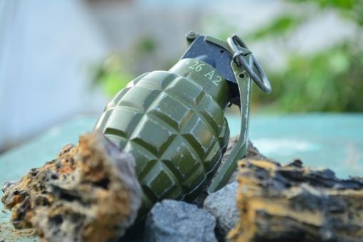 Radiniai Vilkaviškio ir Trakų rajonuose – granata, šautuvas, šoviniai