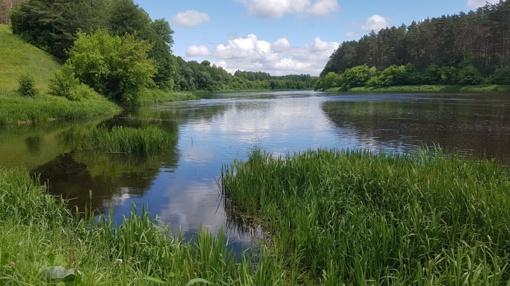 Kviečia rinkti gražiausią Kėdainių rajono savivaldybės upėvardį