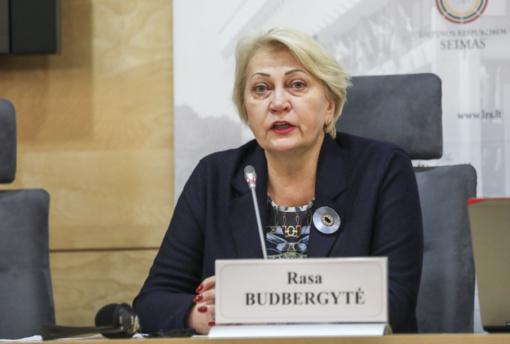 R. Budbergytė: Valstybinio plėtros banko steigimui oponuojantys konservatoriai ir liberalai gina bankininkų interesus