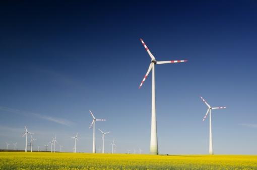 Alytaus rajone planuojamas vėjo jėgainių parkas
