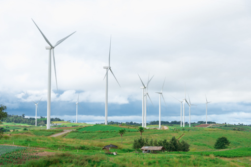 Vėjo jėgainių triukšmas žmonių sveikatai nepavojingas, rodo tyrimas