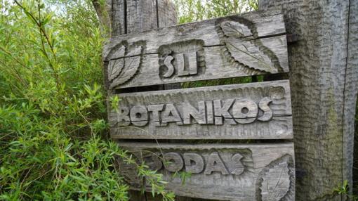 Unikalų Botanikos sodo grožį puoselėja patyręs dendrologas