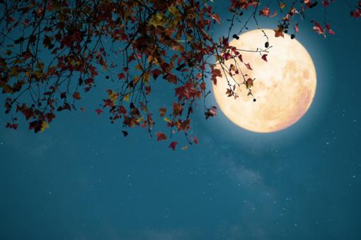 Mėnulio fazių poveikis žmogaus sveikatai
