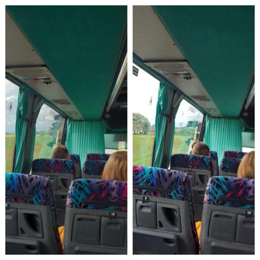 Autobuso vairuotojas partrenktą ir leisgyvį gandrą vilko dalį kelionės