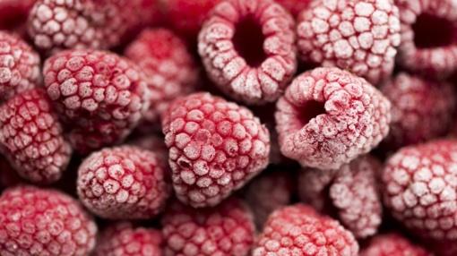 Kaip reikėtų šaldyti uogas, norint ilgiau išsaugoti jų skonines savybes bei vitaminus?