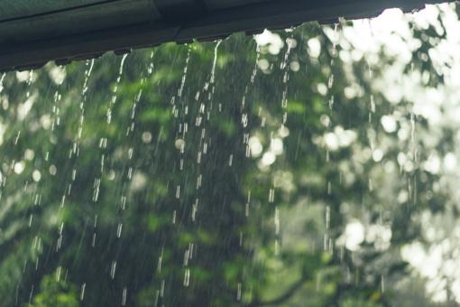 Sinoptikė: ilgasis savaitgalis – šiltas ir su lietumi