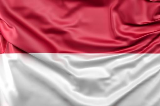 Indoneziją supurtė 6,6 balo žemės drebėjimas