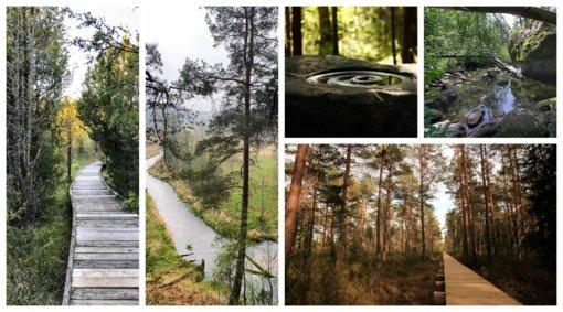 Produktyviam laikui gamtoje – TOP 10 gražiausių pažintinių takų Lietuvoje