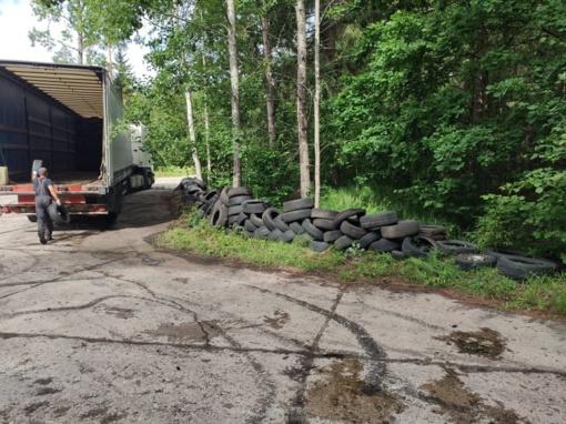 Beveik per pusmetį miškininkai teigia surinkę rekordinį išmestų padangų kiekį