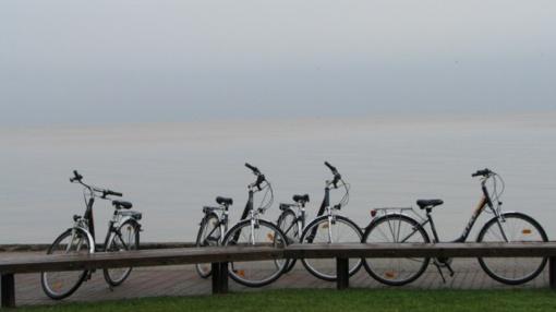 Neringoje vagys nusitaikė į dviračius