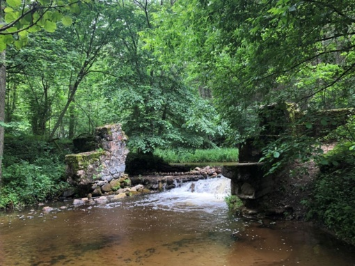 Bražuolės upė laisvinama iš užtvankos gniaužtų