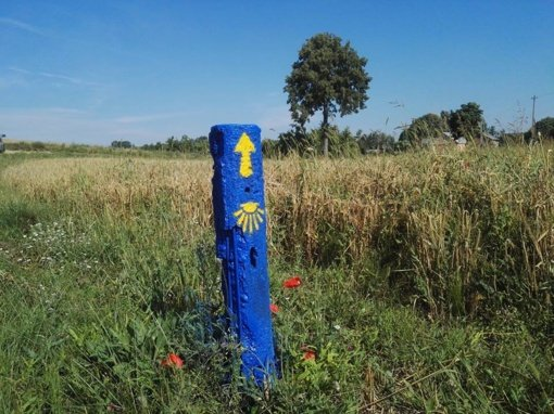 """""""Camino Lituano"""" ‒ tavo kelio pradžia!"""