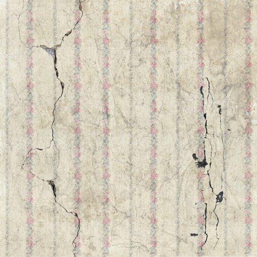 Aliaską supurčius 7,8 balo žemės drebėjimui paskelbtas perspėjimas dėl cunamių