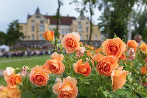Vasaros festivalyje – dėmesys vaikams ir Vilniaus Gaono ir Lietuvos žydų istorijos metams