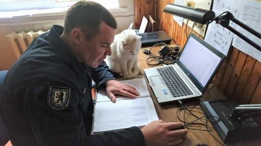Šiaulių ugniagesių gelbėtojų komandos gretose – keturkojė Blondė