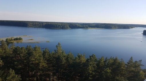 Mokslininkai negauna duomenų apie žuvų išteklių Molėtų rajone kokybę