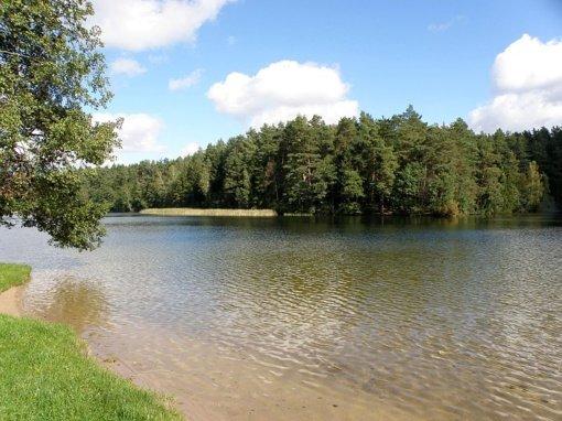 Vanduo Švenčionių rajono maudyklose švarus