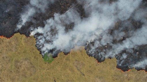 Liepsnoja Amazonės džiunglės: dūmai sklinda per visą pietinį pusrutulį (vaizdo įrašas)