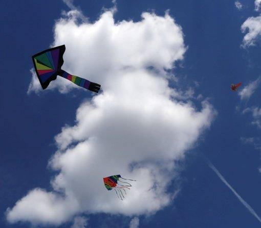 Zapyškio aitvarų festivalyje į dangų pakils ir Baltarusijos vėliava