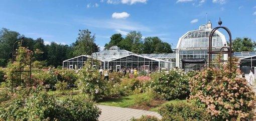 Džiazo pabūklai griaudės VDU botanikos sode
