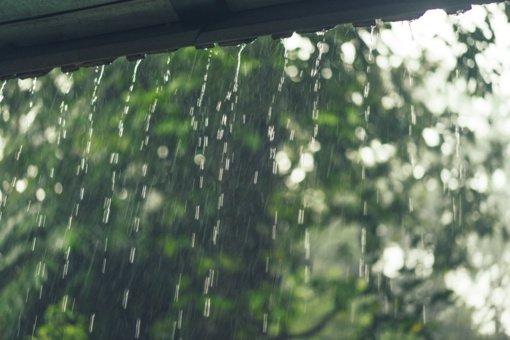 Paskutines vasaros dienas dažnai laistys lietus