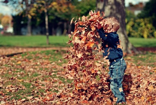 Šiemet Tauragės apskrityje sulaukta daugiau pranešimų apie galimus vaiko teisių pažeidimus nei pernai per tą patį laiką